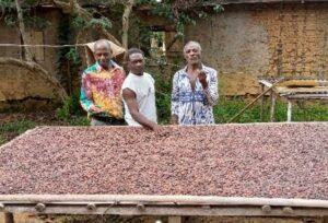 Le planteur de cacao, Emmanuel  Eyeguezok, satisfait de l'appui d'ORG © D.R